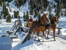 Chariot in Val Roseg