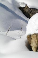 Sneeuw in het Engadin