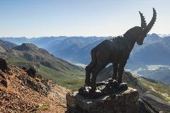 Steenbokstandbeeld op Piz Nair