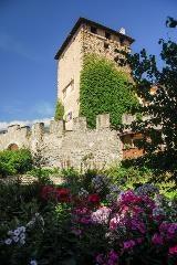 Castle of Rodels