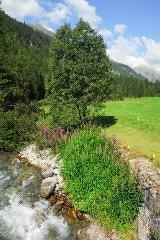River in Val Susauna