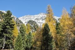 Fall in Val Bever
