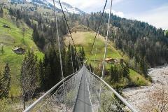 Suspension bridge near Frutigen