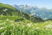 Sillerenbühl - Hahnenmoos Pass