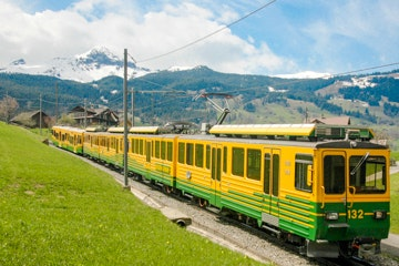Train in the Jungfrau region