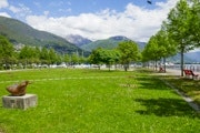 City walk Locarno and Camellia Park