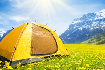 Tent in dandelion field near Grindelwald
