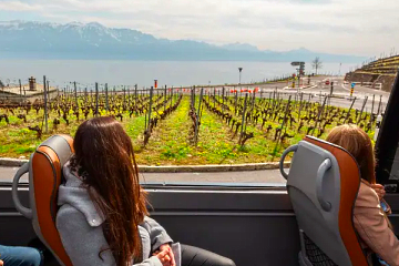 Panoramic Lavaux wine tour from Lausanne