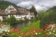 Black Forest and Rhine Falls in one day from Zurich