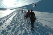 Two hour snow shoe tour in the Jungfrau region