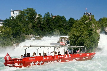 Rhine Falls Attraction Pass