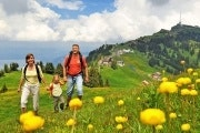 Summer day ticket for Mount Rigi
