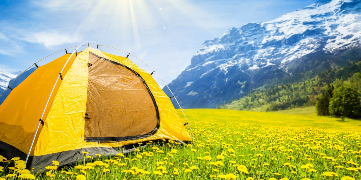 Tent tussen paardenbloemen Grindelwald