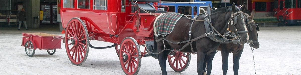 Chariot in Zermatt
