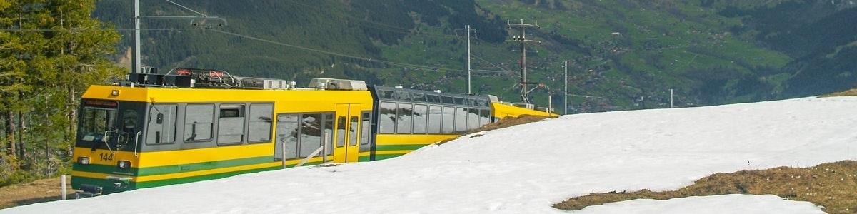 Trein naar Grindelwald bij Alpiglen