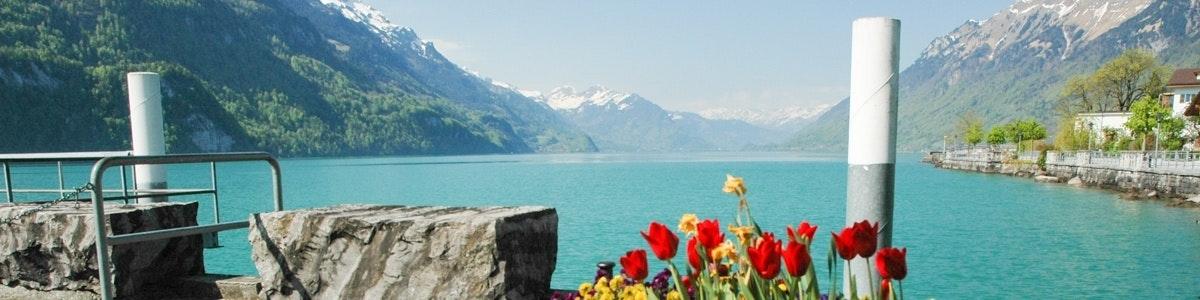 Lake Brienz from Brienz