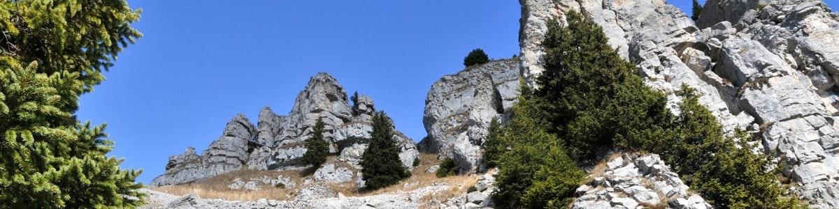 Oberberghorn bij Schynige Platte