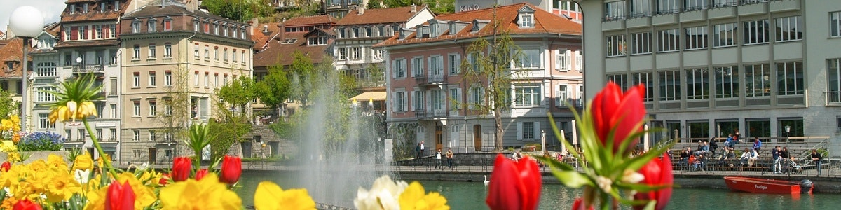Bloemen langs de Aare in Thun