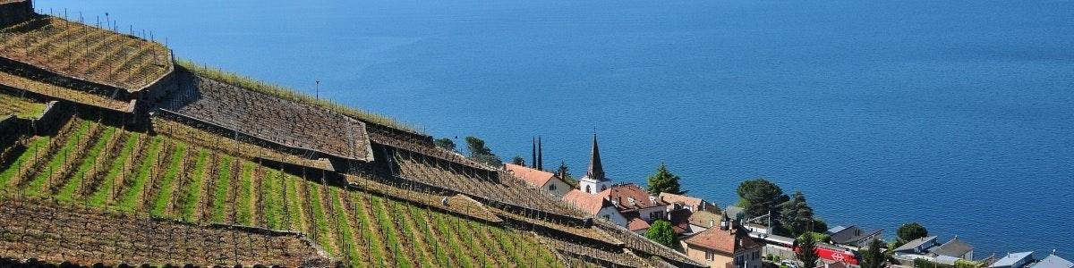 Wijngaarden Lallex Grandvaux
